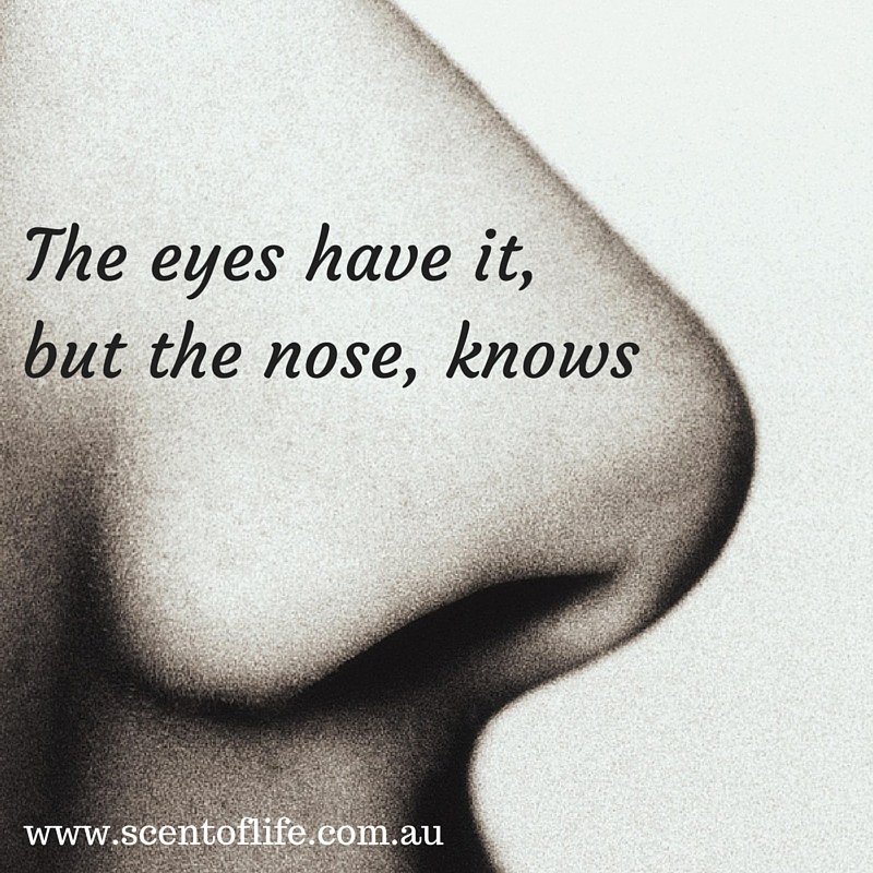 The eyes have it,but the nose, knows